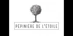 245_logo.jpg